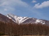 八ヶ岳牧場本場