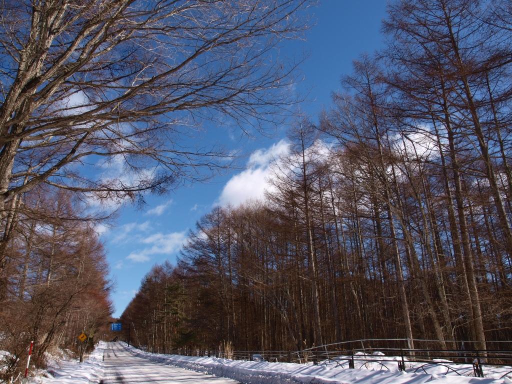 静かな八ヶ岳横断道路