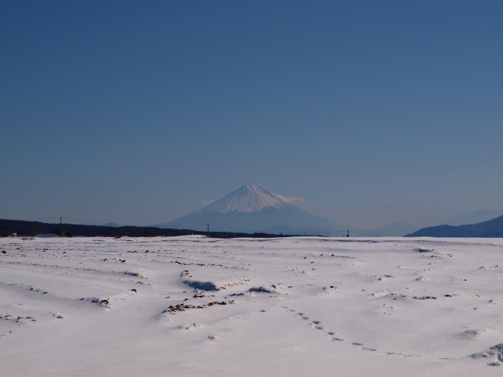 雪の富士見高原から望む富士山