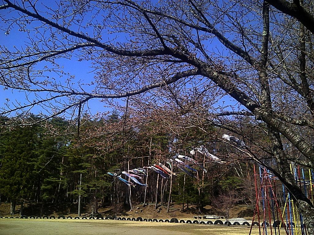 富士見町立境小学校校庭