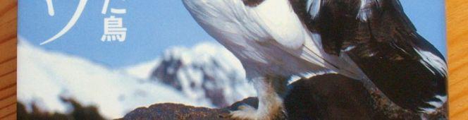 今月の読本「二万年の奇跡を生きた鳥 ライチョウ」(中村浩志 農文協)ライチョウ研究のトップが静かに語る「奇跡」の今