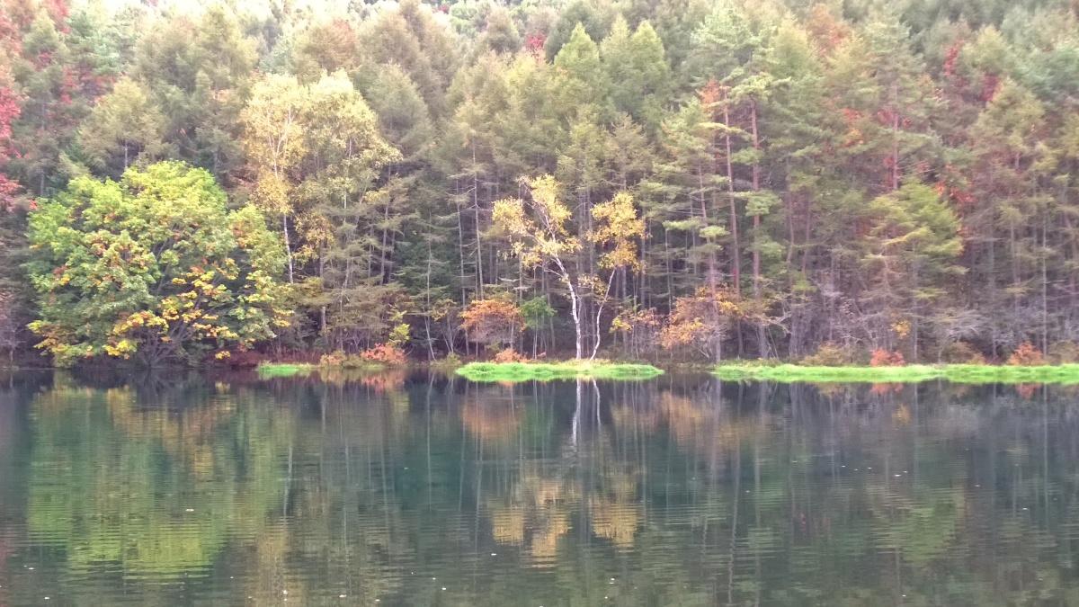 Lumia1020 Camera test(秋色の八ヶ岳・西麓と御射鹿池)