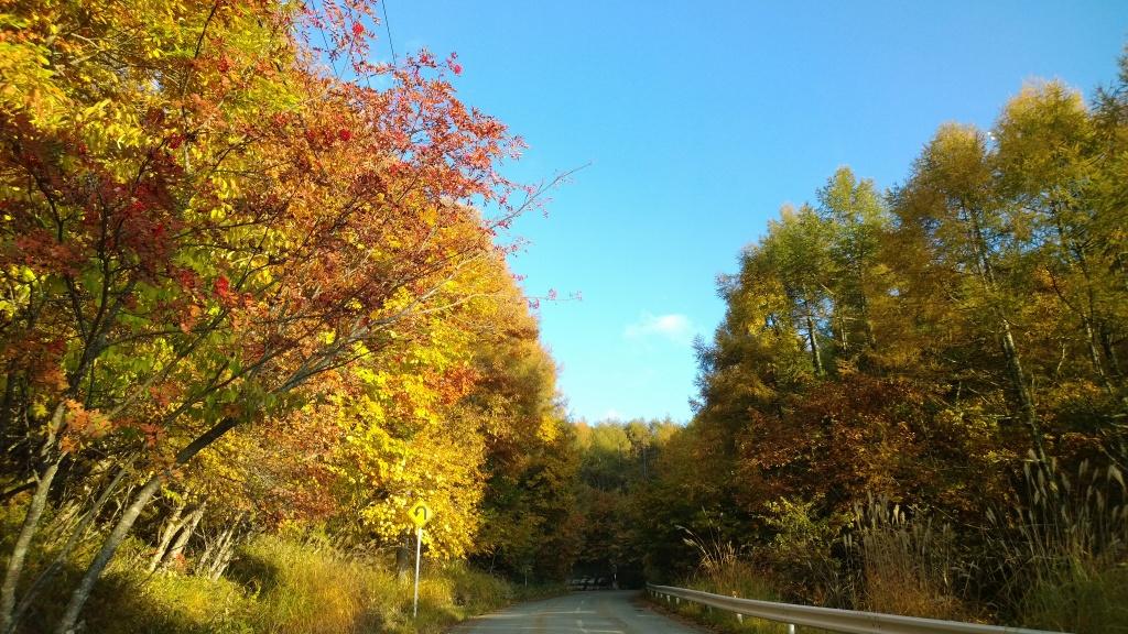 紅葉の御射鹿池へアプローチ