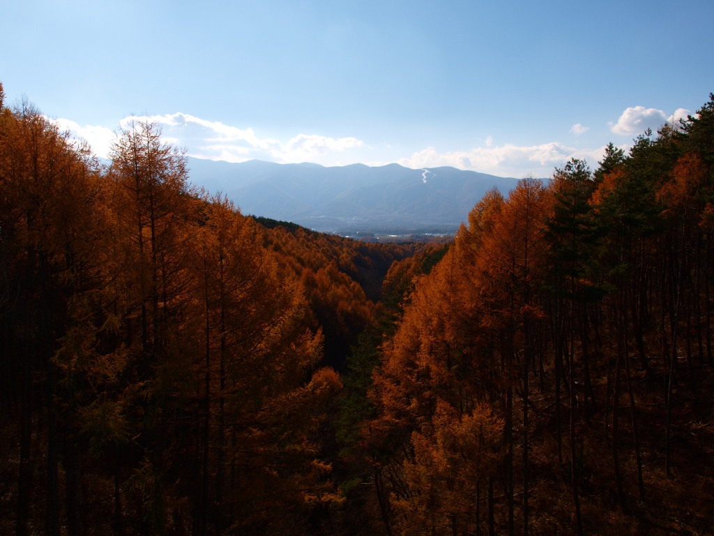 鉢巻道路・岳見橋からの眺め1