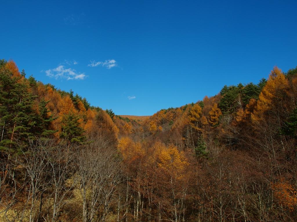 鉢巻道路・岳見橋からの眺め2