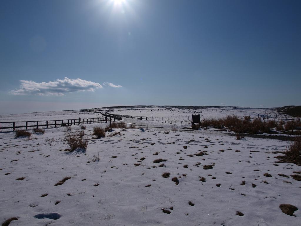 美ヶ原台地の雪原風景