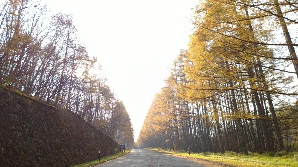 秋色の海ノ口別荘地1