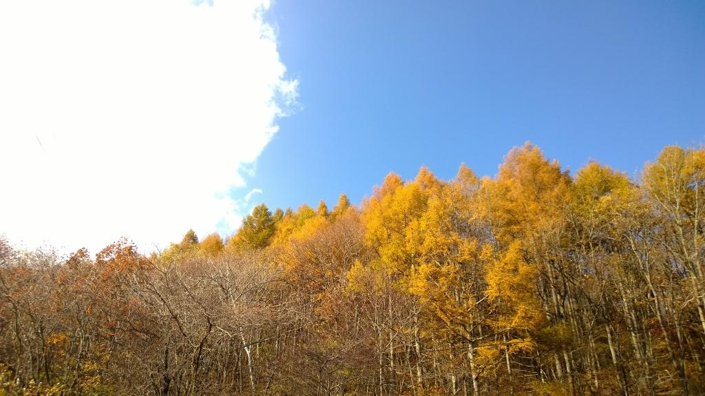 秋色の海ノ口別荘地2