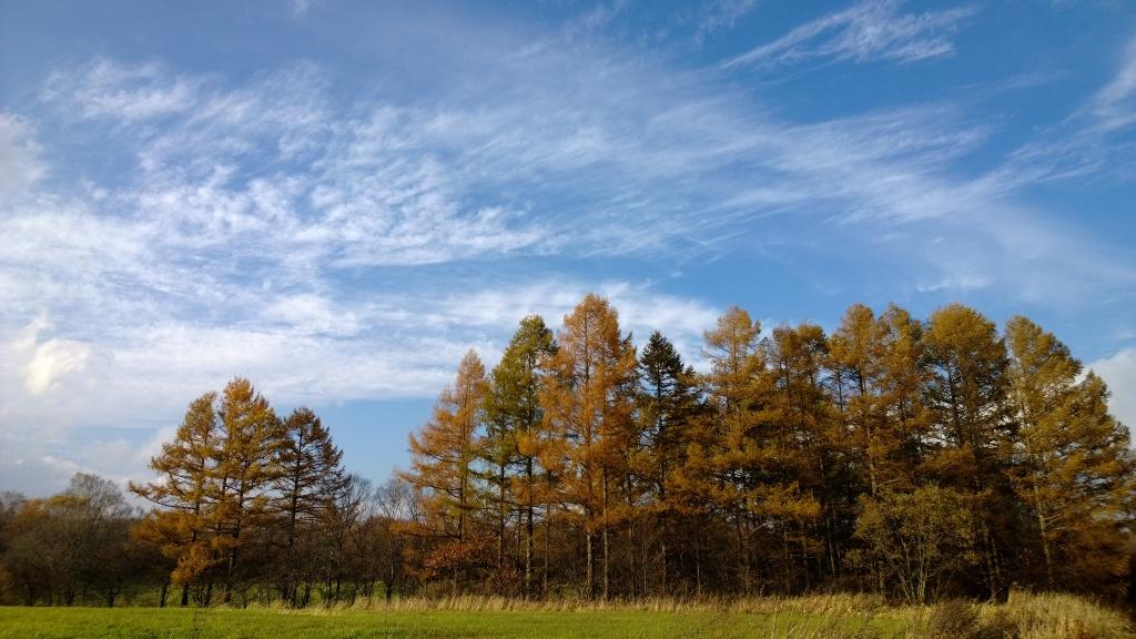 秋空の野辺山3
