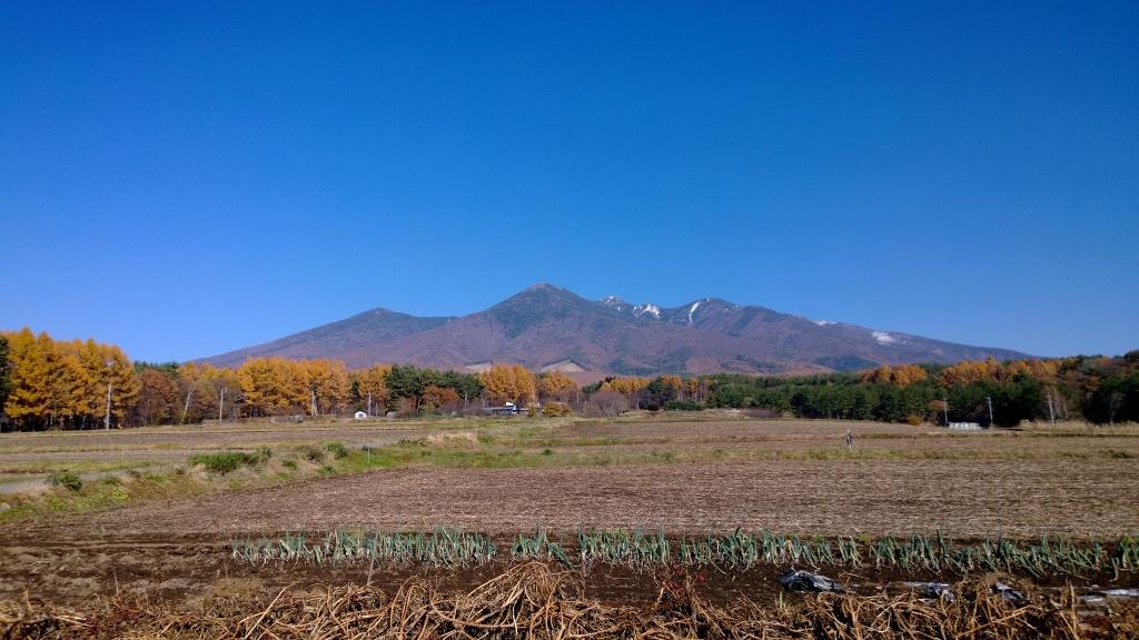 雪を戴く秋晴れの八ヶ岳(富士見町葛窪)
