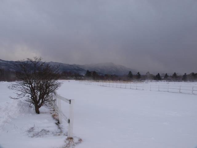 清泉寮から雪原の牧草地