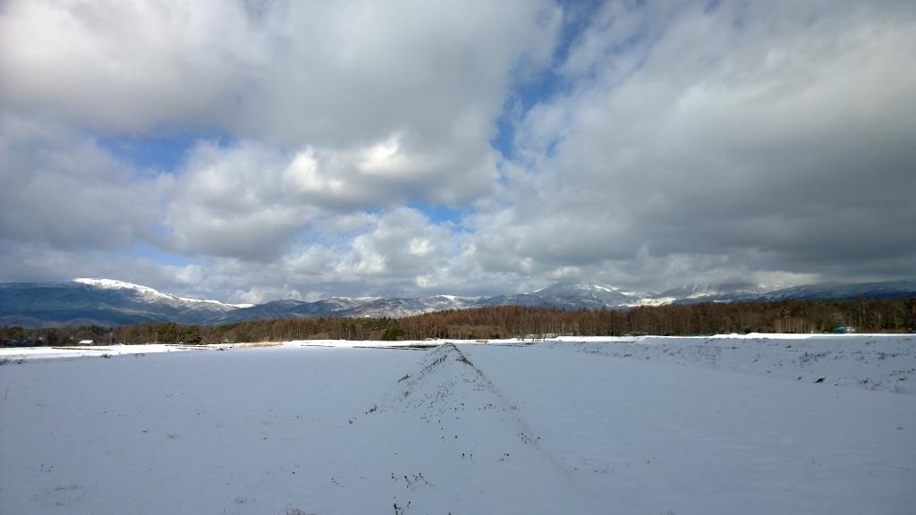 雪原から望む蓼科山