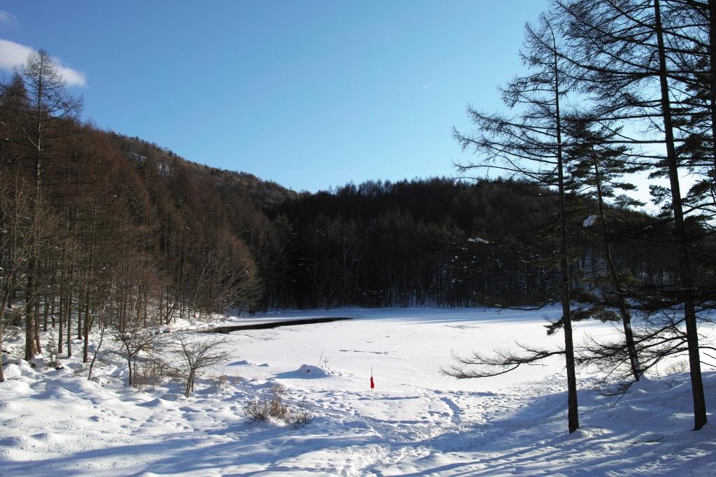 雪の御射鹿池