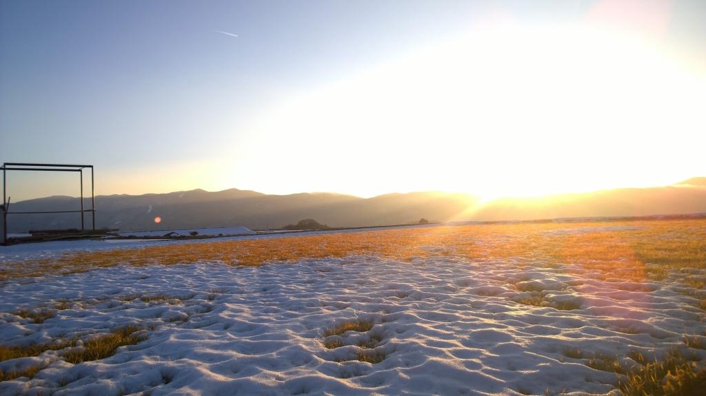 雪原に映る黄金色(camera out)