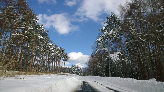 大雪の後で3