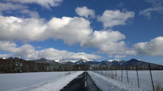 大雪の後で8
