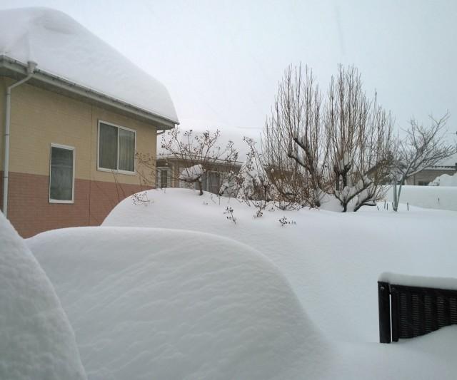 2/15朝の自宅からの積雪の様子