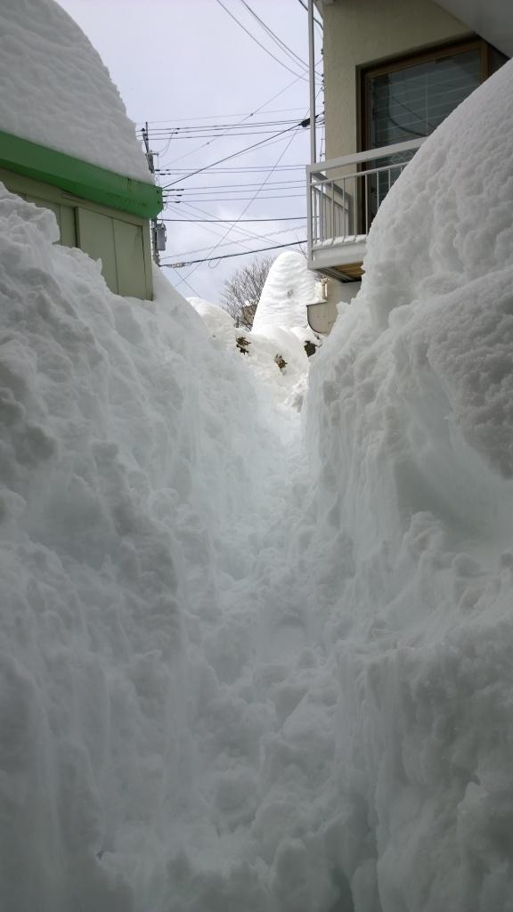 2/15昼の自宅前と雪を割った通路