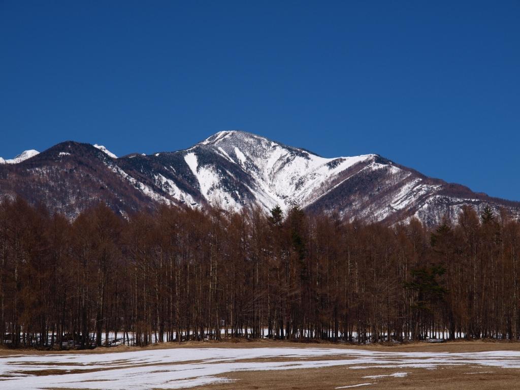 雪原越しに雪渓鮮やかな八ヶ岳