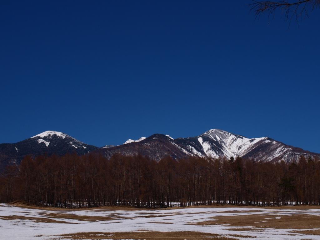 雪原越しに雪渓鮮やかな八ヶ岳2