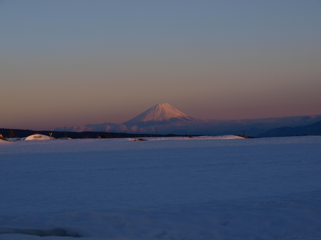 雪原となった立沢水田から望む夕暮れの富士山