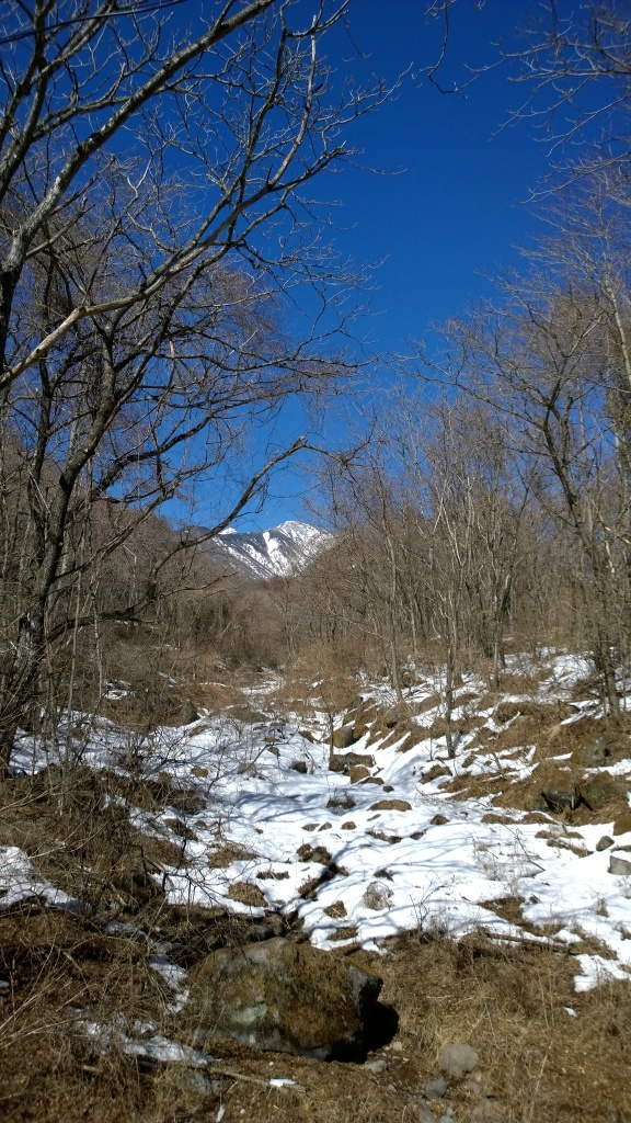 冬の渓流越しに八ヶ岳