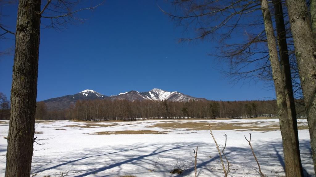 雪原越しに八ヶ岳を4