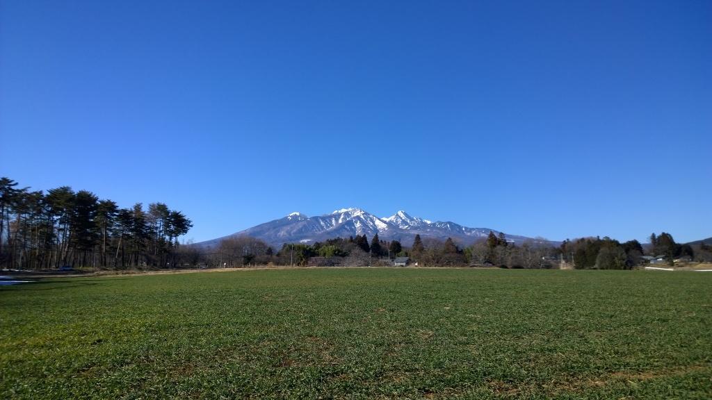 新緑の牧草越しに八ヶ岳ブルーを