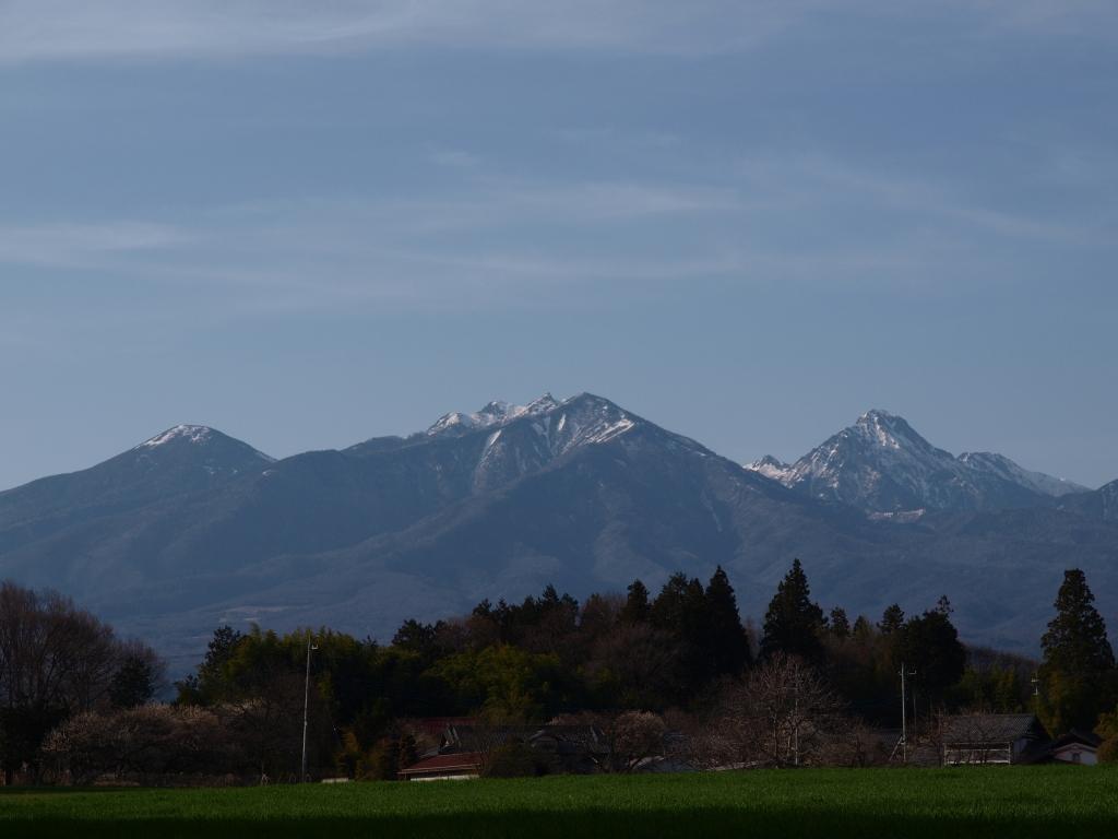 牧草地と雪をいただく八ヶ岳アップ