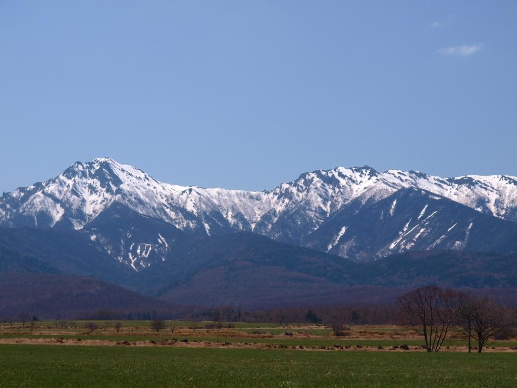 牧場越しに早春の八ヶ岳を遠望2
