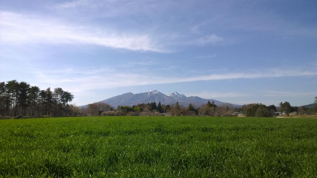 牧草地と早春の八ヶ岳