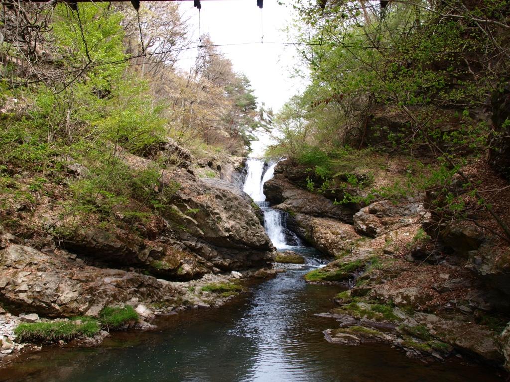 新緑の多留姫の滝4