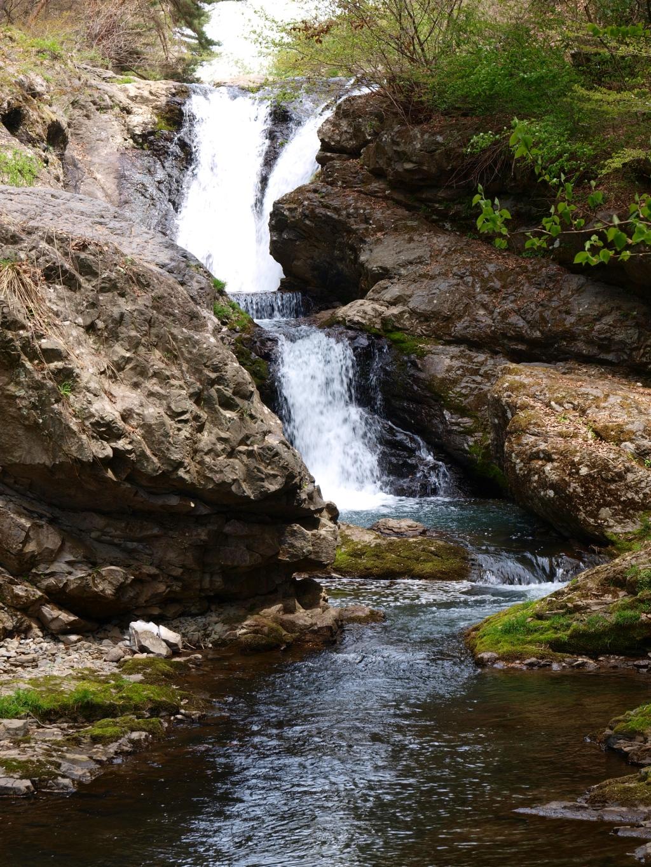 新緑の多留姫の滝5