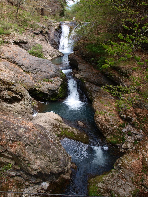 新緑の多留姫の滝7