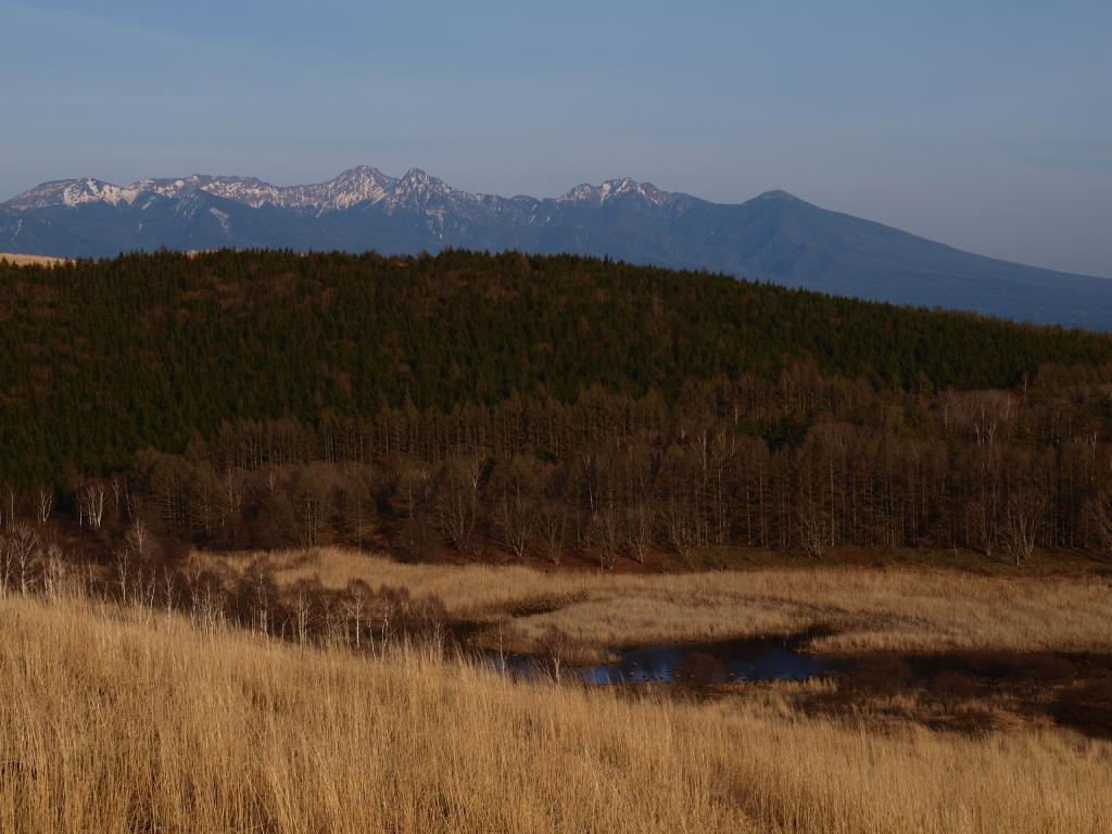 まだ春早い夕暮れの池のくるみと八ヶ岳1