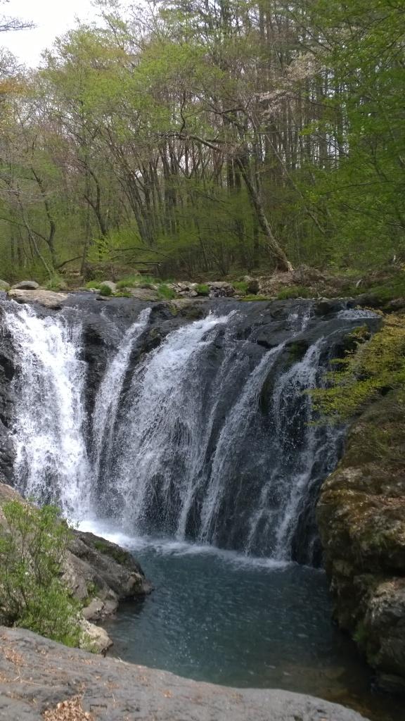 新緑の多留姫の滝1