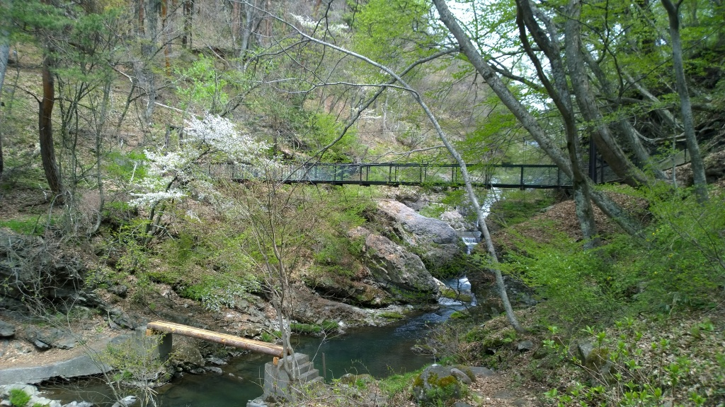 新緑の多留姫の滝3