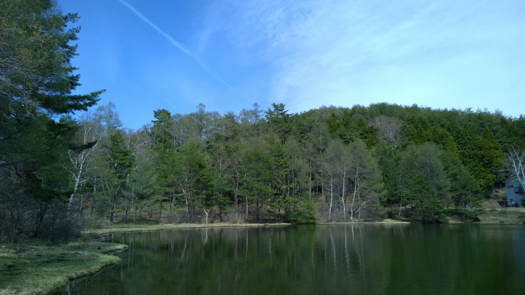 新緑の千代田湖2