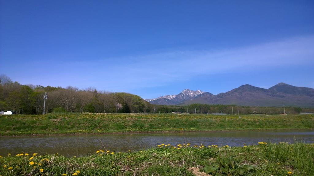 水田越しに八ヶ岳