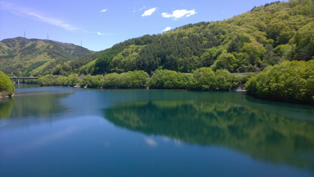 新緑の箕輪ダム湖(もみじ湖)