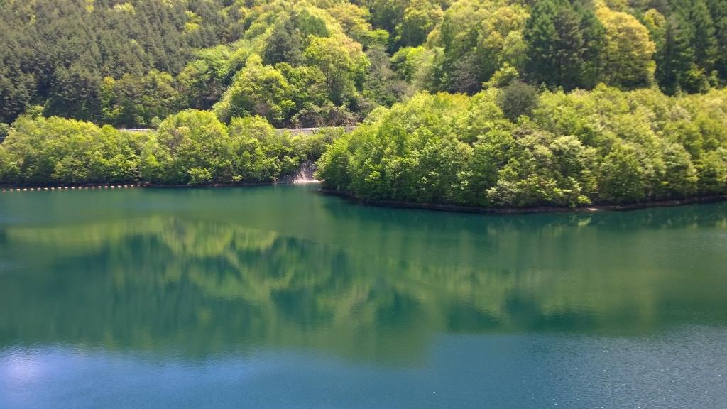 新緑の箕輪ダム湖(もみじ湖)2