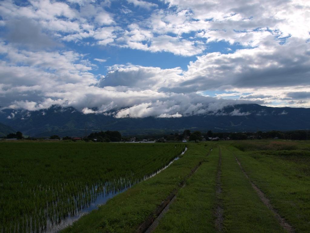 水田越しに望む雨上がりの青空1