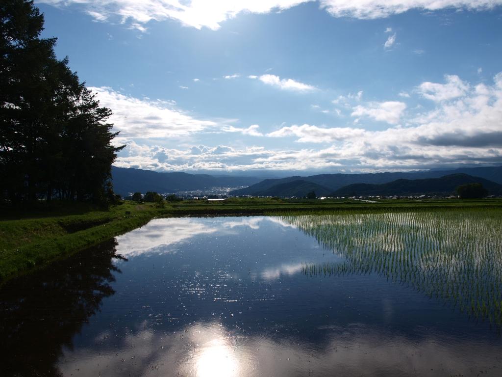 水田越しに望む雨上がりの青空3
