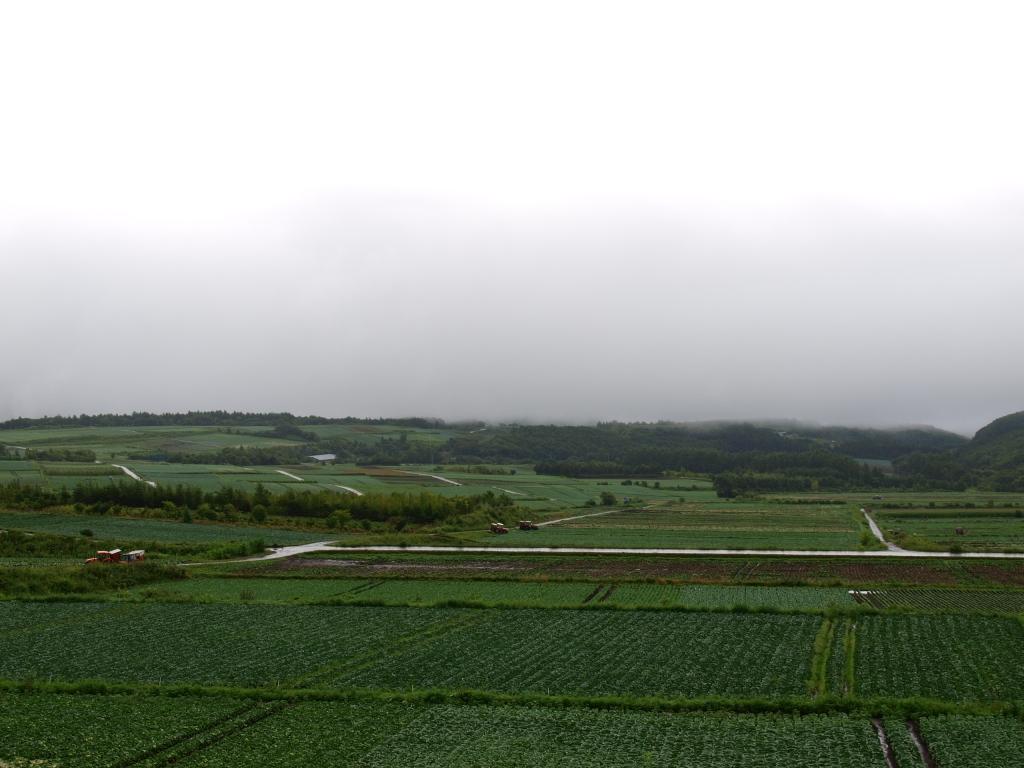 嬬恋村のキャベツ畑遠望