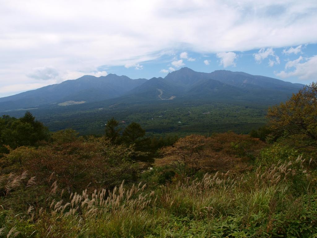 北沢峠から秋の八ヶ岳