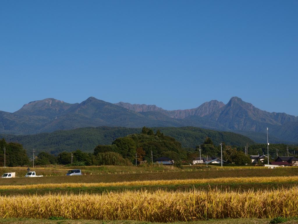 黄金色の八ヶ岳3