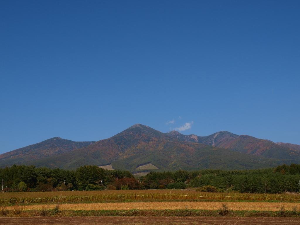 黄葉の始まった八ヶ岳1