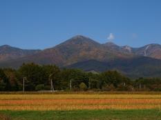 富士見町葛窪