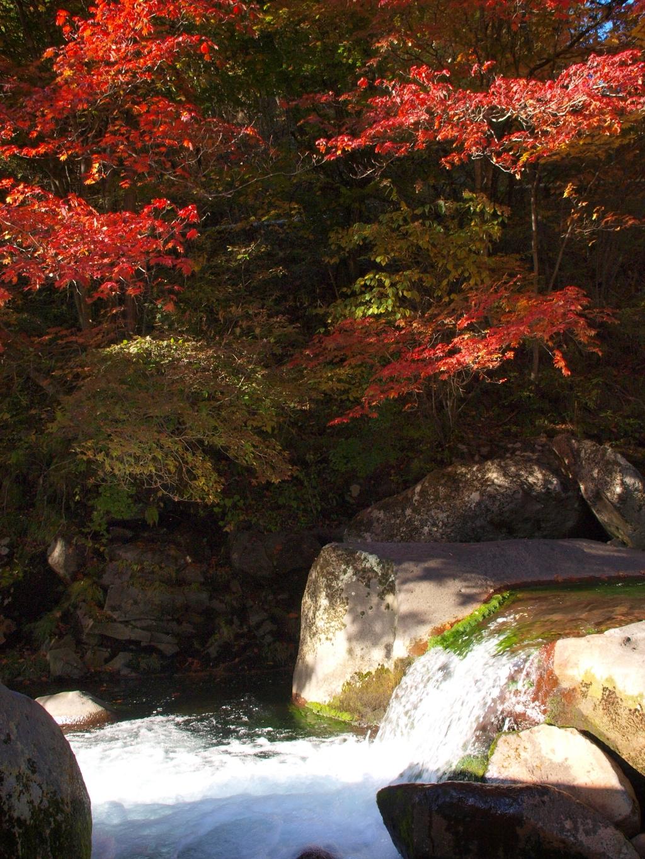 明治温泉とおしどり隠しの滝の紅葉5