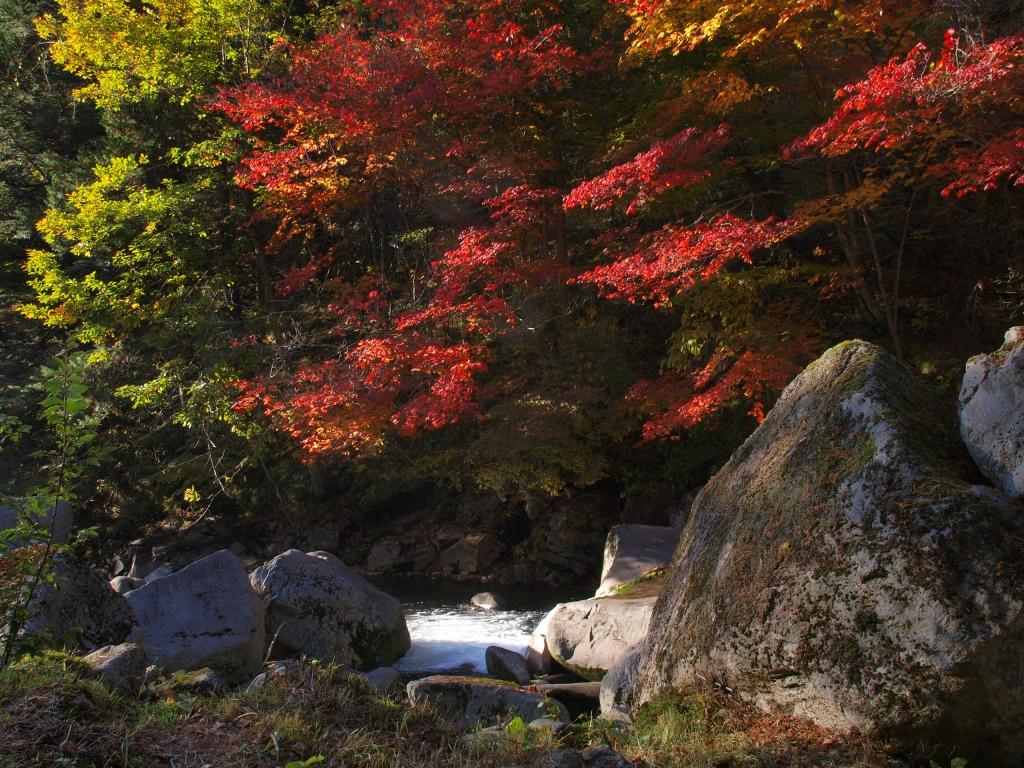 明治温泉とおしどり隠しの滝の紅葉3